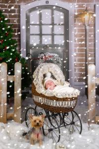 Zabezpieczony: Rodzinna sesja zdjęciowa – Boże Narodzenie
